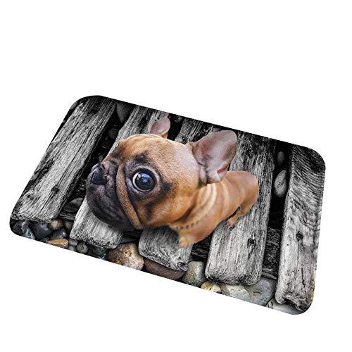 mekolen Estera Linda del Estampado de Animales 3D Forma Cuadrada Antideslizante Estera del Cuarto de baño Alfombras (23,6 x 15,7 Pulgadas)