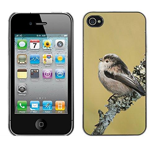 Premio Sottile Slim Cassa Custodia Case Cover Shell // F00014744 oiseau // Apple iPhone 4 4S 4G