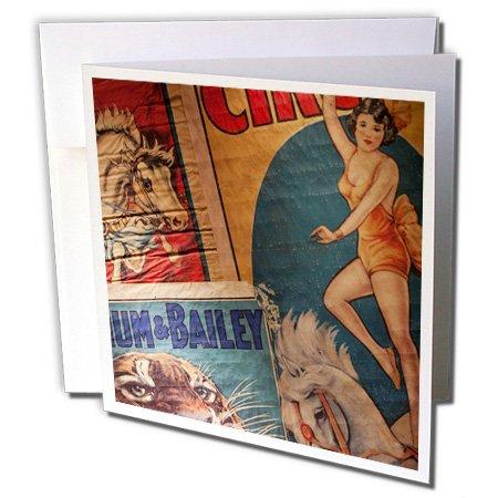 Florida, Sarasota, Ringling Museum, Circus Museum - Greeting Card, 6 x 6 inches, single (gc_89299_5)