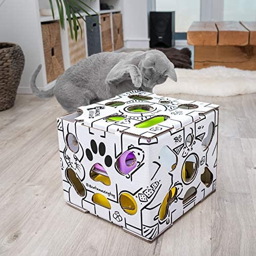 Cat Amazing Sliders – Interactive Treat Puzzle Cat Toy – Active Food Puzzle Feeder 6