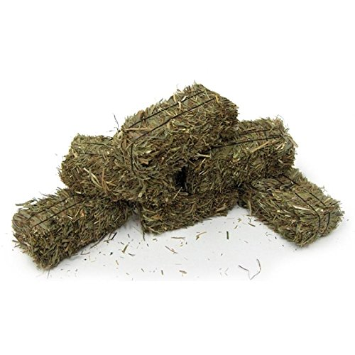 Hay Mini (1/16 Scale Mini Hay Bales Made W/Real Straw and Tied With Wire Ties)
