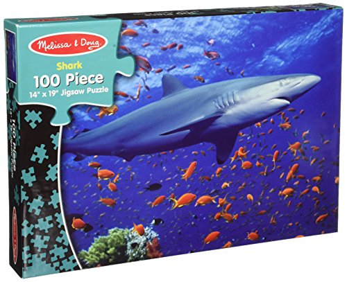 100 Shark - 2