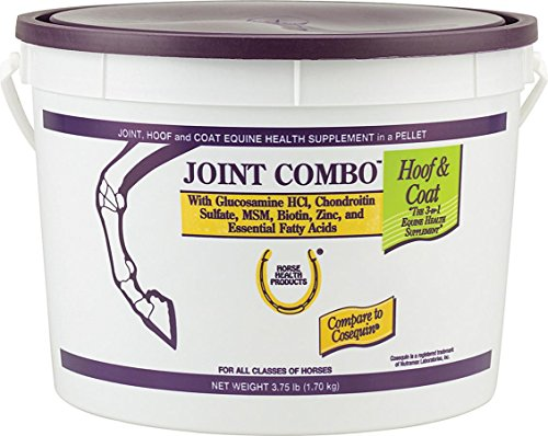 Horse Health Joint Combo Supplement for Hoof and Coat, 3.75 Pound (Palatable Zinc Supplement)