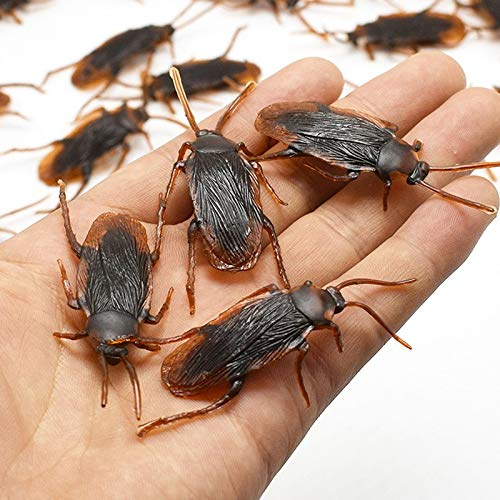 Party Diy Decorations - Halloween Pvc Brown Cockroach Trick Funnytoy April Fool 39 S Day Party House Haunted Prop - Decorations Party Party Decorations Trap Kill Cockroach Insect Killer ()