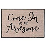 Zacathan432 Area Rug 16' x 24', Entrance Mat, Come in We are Awesome (Script) DoormatIndoor/Outdoor Coral Fleece Welcome Mat,