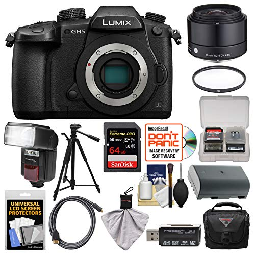 Panasonic Lumix DC-GH5 Wi-Fi 4K Digital Camera Body with 19mm f/2.8 Lens + 64GB Card + Case + Flash + Battery + Tripod + Kit