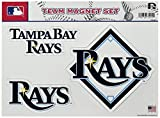 MLB Team Magnet Set