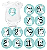 Gift Set of 13 Round Monthly Baby Stickers Including Newborn and 12 Months with French Bulldog Dog Puppy in Aqua Blue MOSB8049