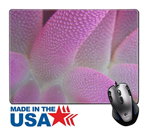 """MSD Natural Rubber Mouse Pad/Mat with Stitched Edges 9.8"""" x 7.9"""" Knysna sea anemone IMAGE 23826645 (Rug Anemone)"""