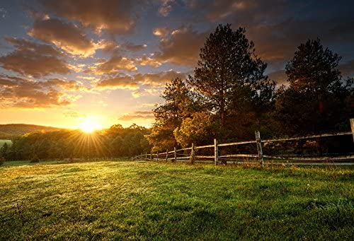 Laeacco 7x5ft Dusk Harvesting Farmland Hayricks Vinyl Photography Background Golden Sunset Glow Summer Countryside Scenery Backdrop Rural Scenic Landscape Wallpaper Studio Photo Props