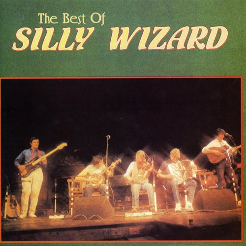 How to buy the best silly wizard?