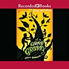 In a Glass Grimmly Audiobook by Adam Gidwitz Narrated by Johnny Heller