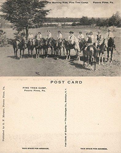 POCONO PINES PA PINE TREE CAMP HORSE RIDE VINTAGE POSTCARD