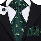 Barry.Wang Men Ties Woven Tie Set with Pocket Suqare Cufflinks Paisley Necktie (Green 5003)