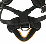 Dean and Tyler The Blade Nickel Hardware Dog Harness with Handle, Black, Medium - Fits Girth Size: 20-Inch to 32-Inch