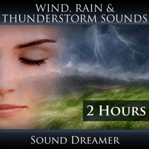 Wind, Rain and Thunderstorm Sounds (2 Hours) by Sound ...