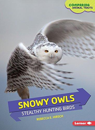 Snowy Owls (Snowy Owls: Stealthy Hunting Birds (Comparing Animal Traits))