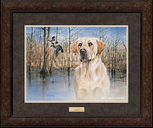 Marsh Memories - Yellow Lab GNA Premium+ Framed Print by Jim Killen