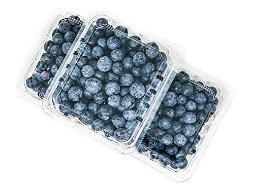 One Pint Clear Plastic Berry Clamshell Container Vented (30 Count) for Strawberry Blueberries Tomatoes and Produce (Basket Fruit Lid Plastic With)