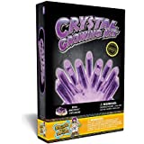 Crystal Growing Kit - Grow Stunning Purple Crystals (Includes Real Amethyst)!
