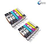 Bora Compatible Ink Cartridges PGI-250 CLI-251 Replacement for Inkjet Printers: PIXMA MG5420 PIXMA MG5450 PIXMA MG5520 PIXMA MG6320.12Pack(2LBK/2BK/2C/2M/2Y/2GY)