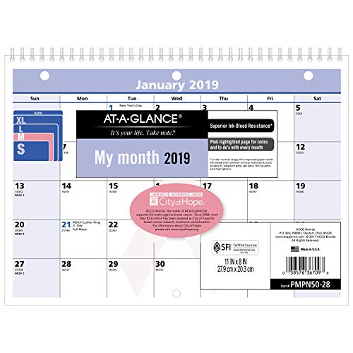 AT-A-GLANCE 2019 Monthly Wall Calendar, QuickNotes, 11 x 8, Small, Wirebound, City of Hope, Pink/Blue (PMPN5028)
