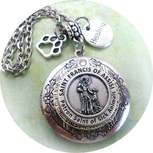 (grOOvy empOrium St. Francis Healing for Sick Pet Amulet, Saint Francis Locket - Holy Medal w-Swarovski Crystal, Patron Saint of Animals)