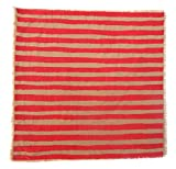 Gitika Goyal Home Windows Collection Cotton Khadi  Khaki Napkin 17x17 Stripe Design, Red Hand Screen Print