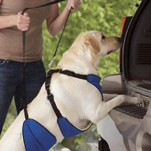 og Harness Helping Hand Mobility For Senior Or Disabled Pets (4in 1 Dog Lift)