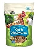 Manna Pro Oat & Mealworm Snack Blend Treats, 2 lb