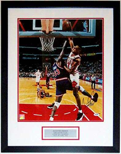 Scottie Pippen Signed Chicago Bulls Playoffs Dunk 16x20 Photo - PSA DNA COA Authenticated - Professionally Framed & Plate