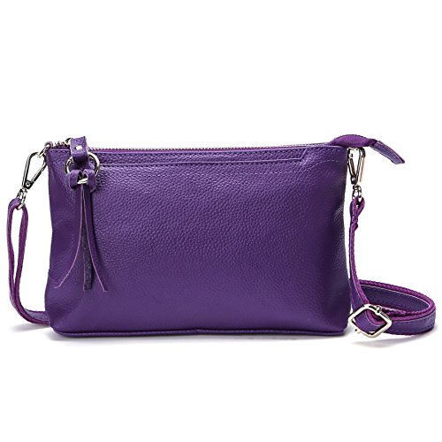 SCIEN Women Small Leather Crossbody Purse Zipper Clutch Wallet Cell Phone Bgas,Purple Bag Fashion Camera Wallet