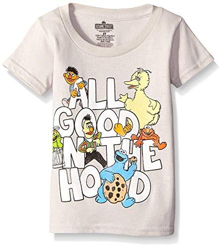 Sesame Street Little Boys' Toddler Short Sleeve T-Shirt, Silver, 4T