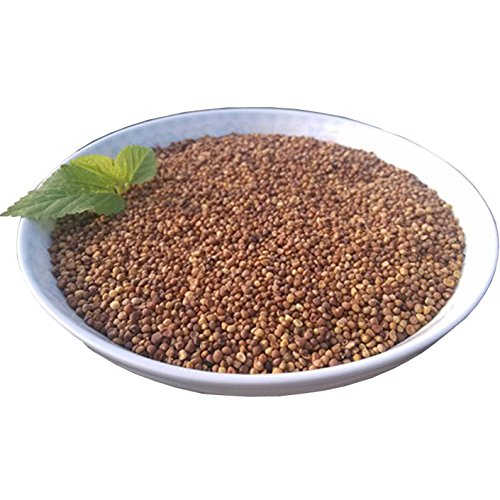 Wild Chinese Dodder Seed, TuSiZi(250g Chinese (Dodder Seed)