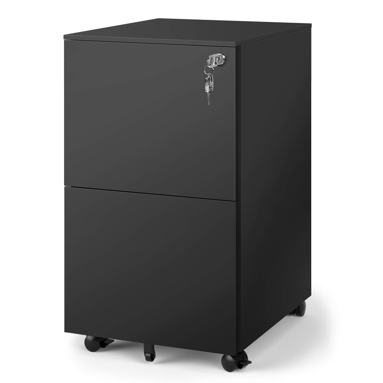 DEVAISE 2-Drawer Mobile File Cabinet with Lock, Commercial Vertical Cabinet in Black by DEVAISE