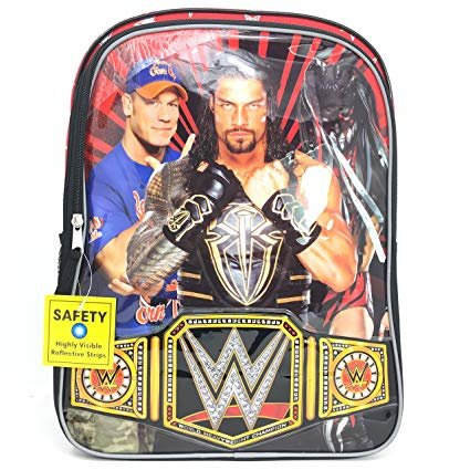 2018 WWE 16 inch Backpack with Side Mesh