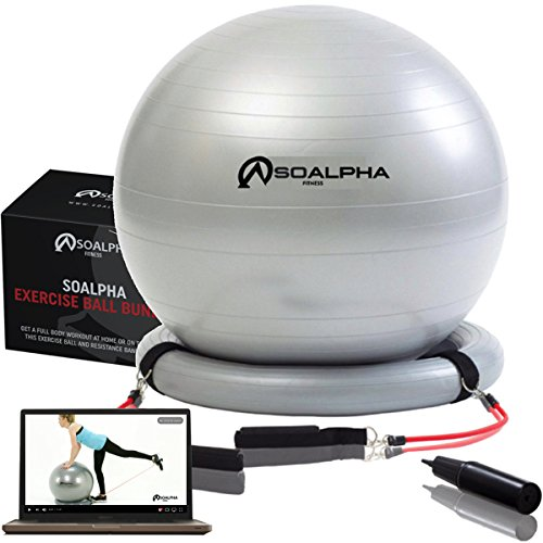 SoAlpha Premium Exercise Ball with 15LB Resistance Bands, Stability Base, Pump, 65 cm Fitness Ball, Supports up to 600LBS, Stability Ball with Gym Quality Resistance Bands, Complete Home Gym Bundle