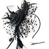 DRESHOW Fascinators Hat Flower Mesh Ribbons Feathers on a Headband and a Clip Tea Party for Girls and Women