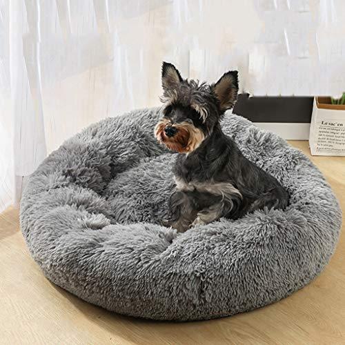 Marvelous Amazon Com Dog Cat Bed Round Pet Bed Calming Living Room Machost Co Dining Chair Design Ideas Machostcouk