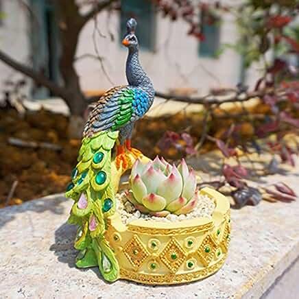 Peacock Plant Pot