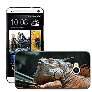 Hot Style Cell Phone PC Hard Case Cover // M00112207 Lizard Lying Reptilian Reptile Under // HTC One M7