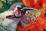 Little Jewel, Hummingbird By Internationally Renown