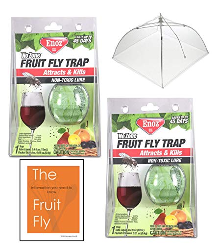 The Ideal Set of 2 Fruit Fly Traps for kitchen- Works Great Indoors to trap fruit flies. Includes 1-17
