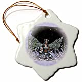 3dRose orn_31042_1 Winter Solstice Winter Fairy Snowflake Porcelain Ornament, 3-Inch