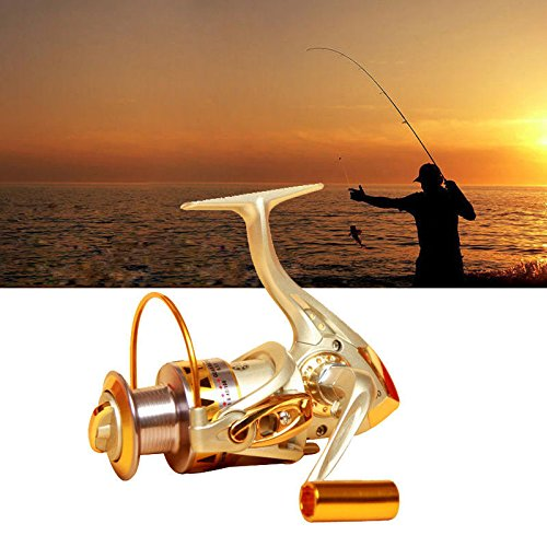 (Glumes Fishing Reel, Spinning Reel, 10BB, Ultralight Weight, Super Smooth for Freshwater and Saltwater)