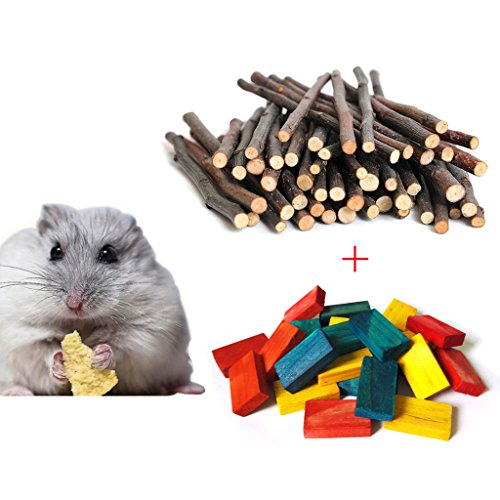 Sticks,100G Natural Apple Branch & 24pcs Colored Wood Chews Sticks Molar Teeth Toy for Small Pets Chew Treat (Hamster Chew Sticks)