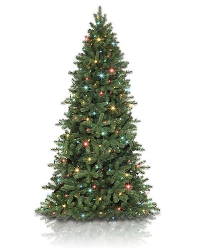 Spruce Multi Color Christmas Tree - 7