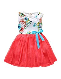 Kids Baby Toddler Girls Flower Printed Lace Princess Dress Sundress