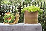 Garden Statues Solar Lights Snail Garden Decor, 10 Inch Figurines with LED Lights, Resin