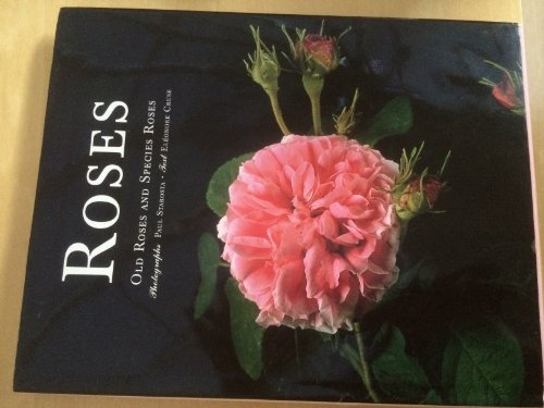 Roses: Old Roses and Species Roses